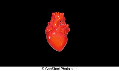 Super strong human heart