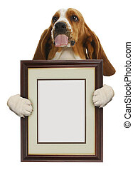 dog holding picture frame