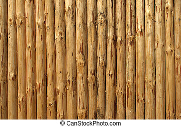 pine\\\'s timbered felling horisontal background