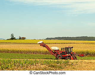 Red Farm machine cane harvester on Australian agriculture land