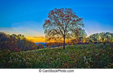 Blue Ridge Georgia mountains - fall time in blue ridge ga