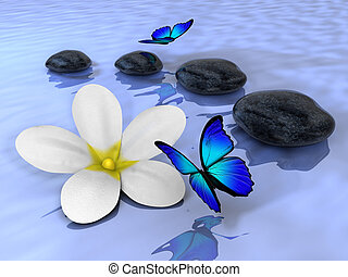 Stones 5 - A flower, butterfly and four stones on water -...