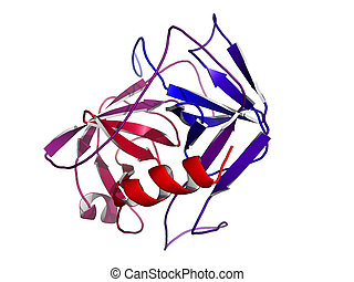Prostate-specific antigen (PSA), chemical structure -...
