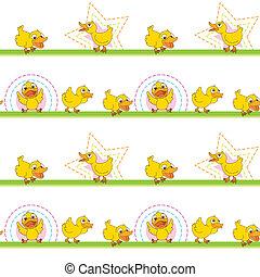 ducks - illustration of ducks on a white background