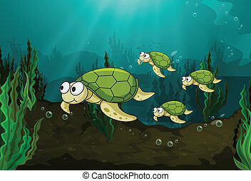 turtles - illustration of a turtles under sea water