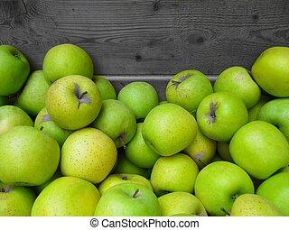 Harvest of golden apple. - Harvest of golden apple, image...