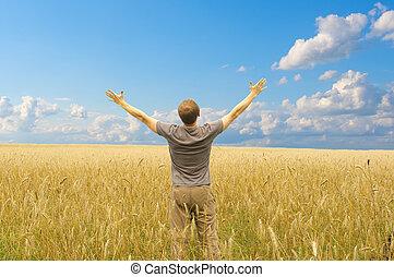 Man in yellow wheat meadow
