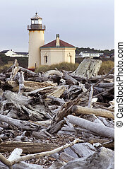 Coquille River Lighthouse - Beach driftwood at low tide in...