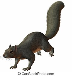 Squirrel - 3D Render of an Squirrel