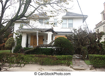 Fallen tree damaged house - FAR ROCKAWAY, NY -OCTOBER 30:...