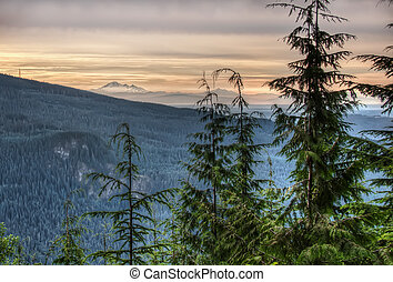 View of Forested Mountains Leads to Mt Baker - View of...