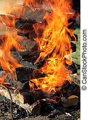 Closeup of burning fire wood