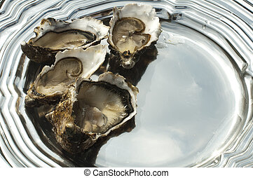 Oysters on a silver platter