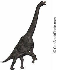 Brachiosaurus-3D Dinosaur - 3D Render of an Dinosaur
