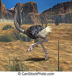 Ostrich-3D Animal - 3D Render of an Ostrich