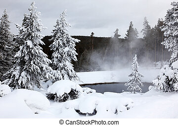 winter season at lake of Yellowstone National Park,  USA