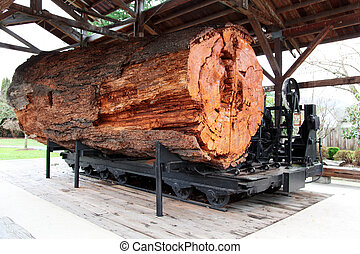 big log at Snoqualmie Centennial Pavilion, were David Lynch...