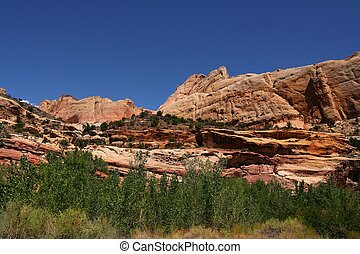 Captial Reef - View of the red rock formations in Capital...