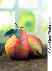 Freshly harvested pears - Freshly harvested ripe red and...