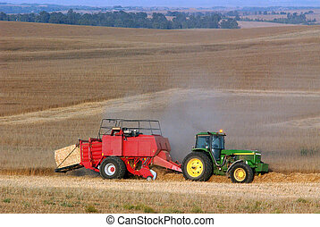Tractor in the field - Tractor works in a wheat field