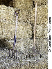 Rake in straw - Two rakes on mountain of straw stacked in...