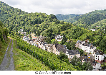 Aerial view of mosel city Trarbach with vineyards