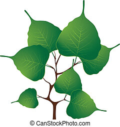 Branch with green leaves, vector