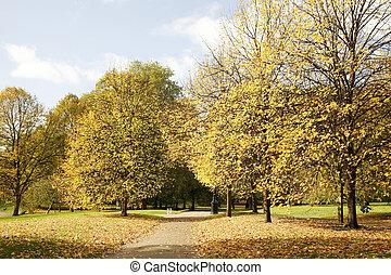 London Autumn Colors - Colorful London Autumn, Green Park...