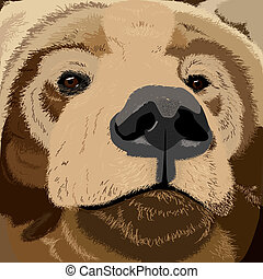 Grizzly bear face - Illustration of a grizzly bear face,...