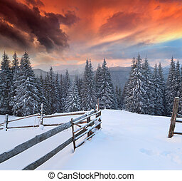 Dramatic winter landscape in the mountains. Colorful sunrise