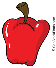 a red capsicum - illustration of a red capsicum on white...