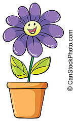 a flower plant in a pot