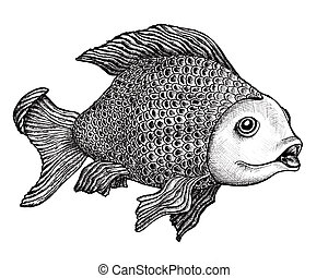 Fish Drawing - Ink drawing of a large carp with an enigmatic...