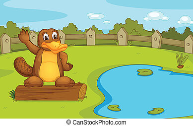 Platypus - Illustration of a platypus on a log