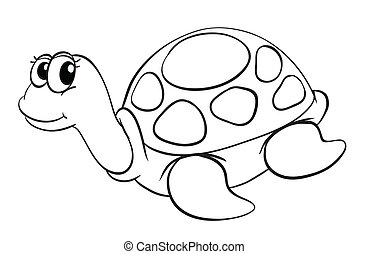 a tortoise sketch - illustration of a tortoise sketch on a...