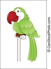 Cartoon Parrot Vector Illustration