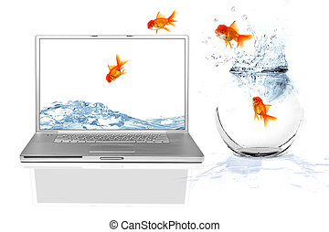 Looking for a Better Thing - Goldfish Escaping Their World...