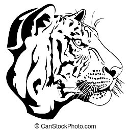 Tiger - illustration of tiger head in line art style...