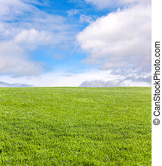Green field and blue sky for background