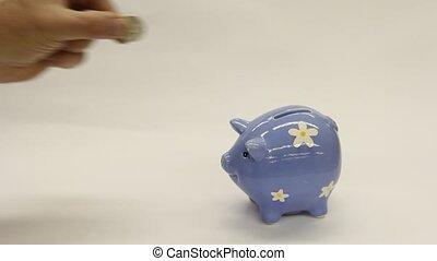piggy bank - coins being put into a piggy bank
