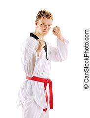 Man training taekwondo Isolated on white background
