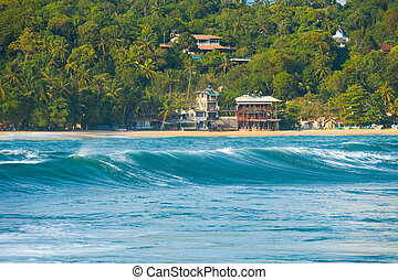 Rear Wave Hotels Unawatuna Surf Spot Sri Lanka - The rear of...