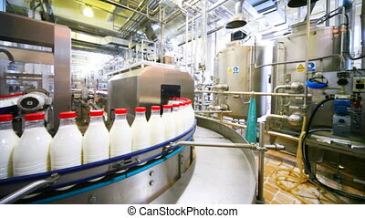 many bottles milk with red caps move in row on conveyor at...