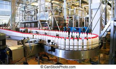 bottles yogurt with red caps move long zigzag conveyor at factory