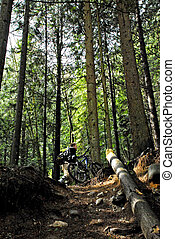 Up on the woods - a man mountain biking in between the woods