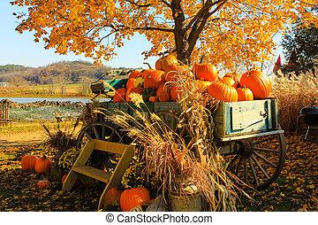 Autumn splendor... - An Autumn wagon on a farm.