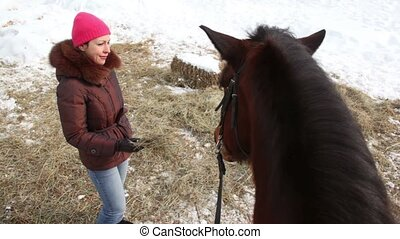 Woman feed horse, dog lay on hay in snow at winter day
