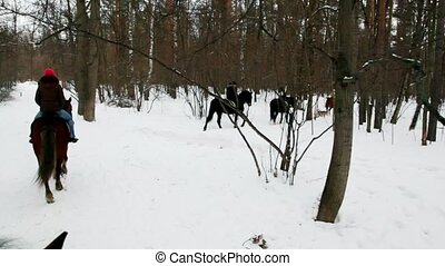Several people ride horseback in forest at winter day