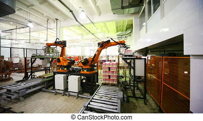 hydraulic crane automatically takes from conveyor and places...
