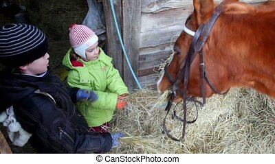 Boy and girl feed horse